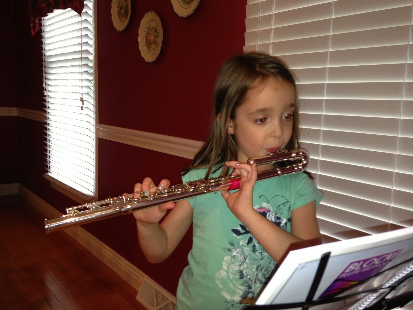 Why Take Private Flute Lessons And School Band Kathys Music
