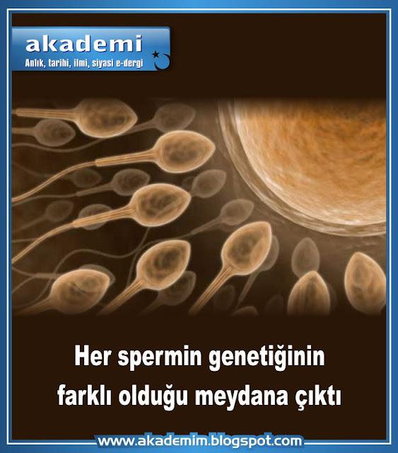 Her spermin genetiğinin farklı olduğu meydana çıktı