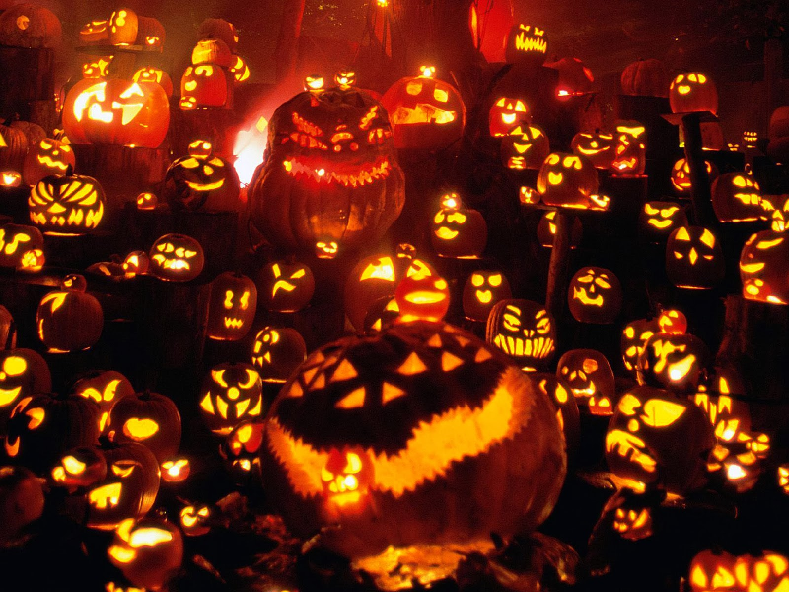 the celebration of halloween began in ireland in about 1000 ad so its no wonder that there are so many irish halloween traditions that continue around the