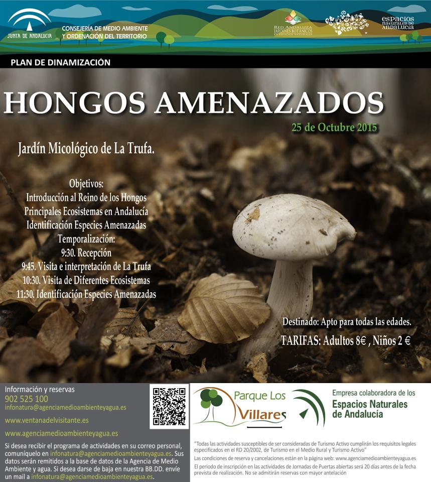Cordobaviva hongos amenazados for Jardin micologico la trufa