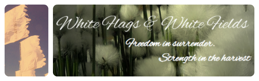 White Flags & White Fields                         freedom in surrender. strength in the harvest