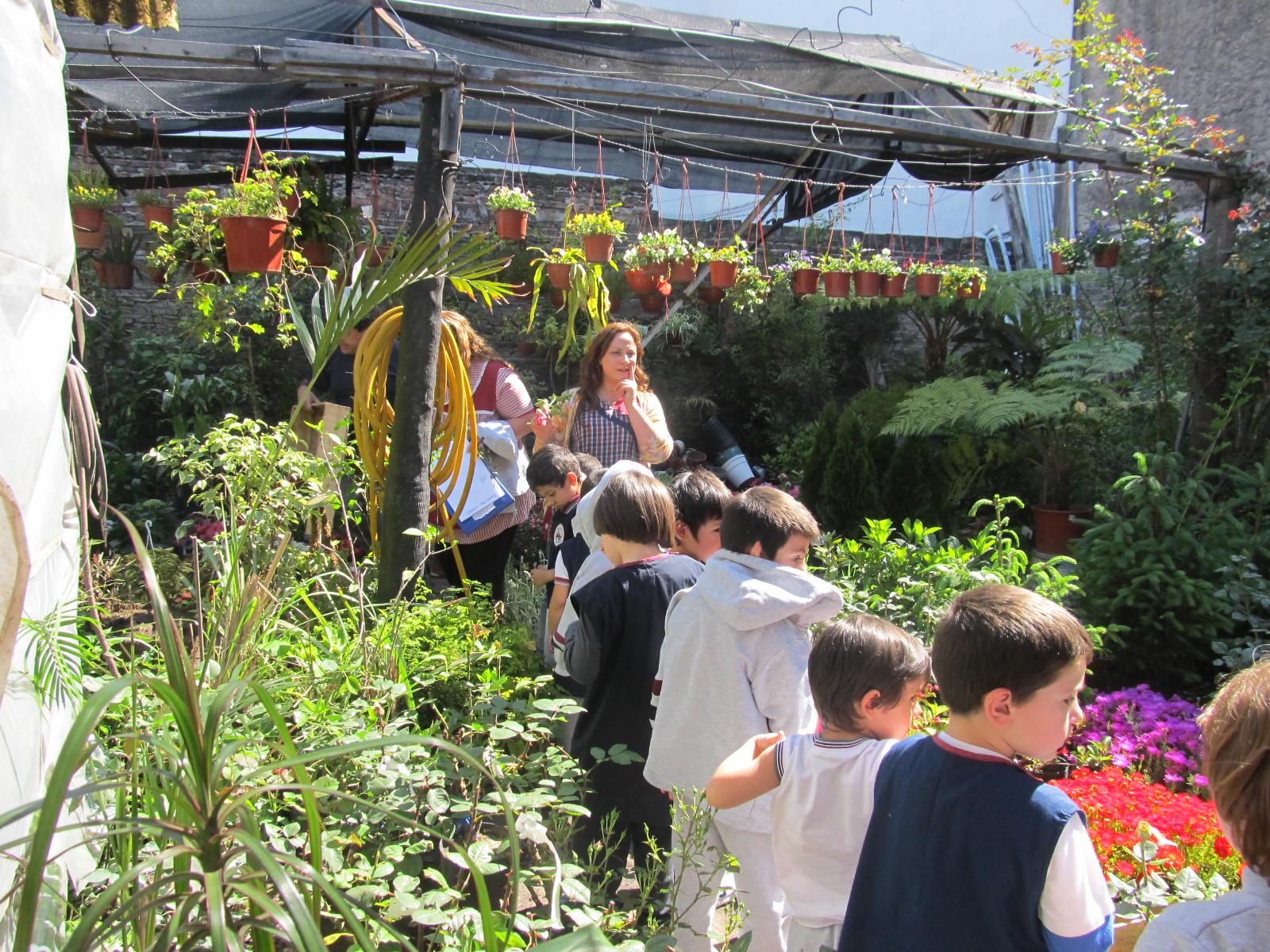 El jardin del almafuerte unidad el vivero del barrio for Vivero el jardin