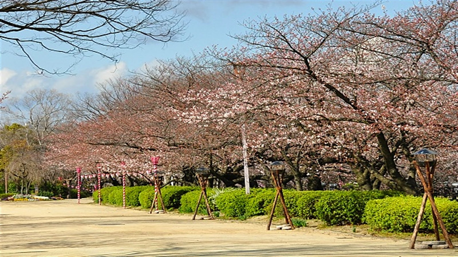 Nishinomaru Garden is Osaka's most popular location for cherry blossom viewing and Hanami Parties. Nishinomaru Garden features around 600 cherry trees, ...