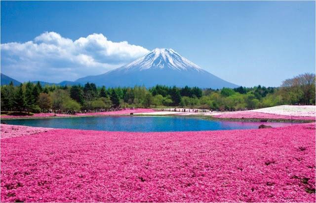 Tempat Wisata di Jepang | Tempat Wisata Unik di Dunia
