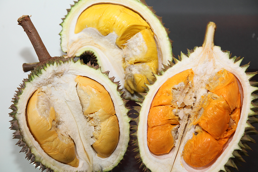 For some people, the durian is the king of all fruits. It smells delicious and tastes like no other, addictive. Aja uda heard that word make you drool .... For some others, the smell of durian from a distance of 5 meters was already made nauseous.