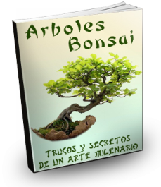 Libros para todos libro cultivar un bonsai - Libros de bonsais ...