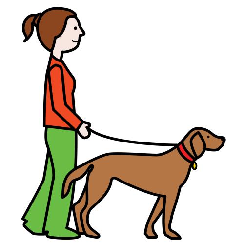 Pasear al perro | Perro Paseos