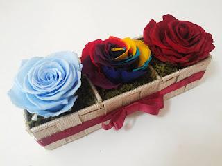 Rosas Naturales Preservadas Celeste payaso circo y roja ¡Duran 4 Años! Santa Ana, El Salvador