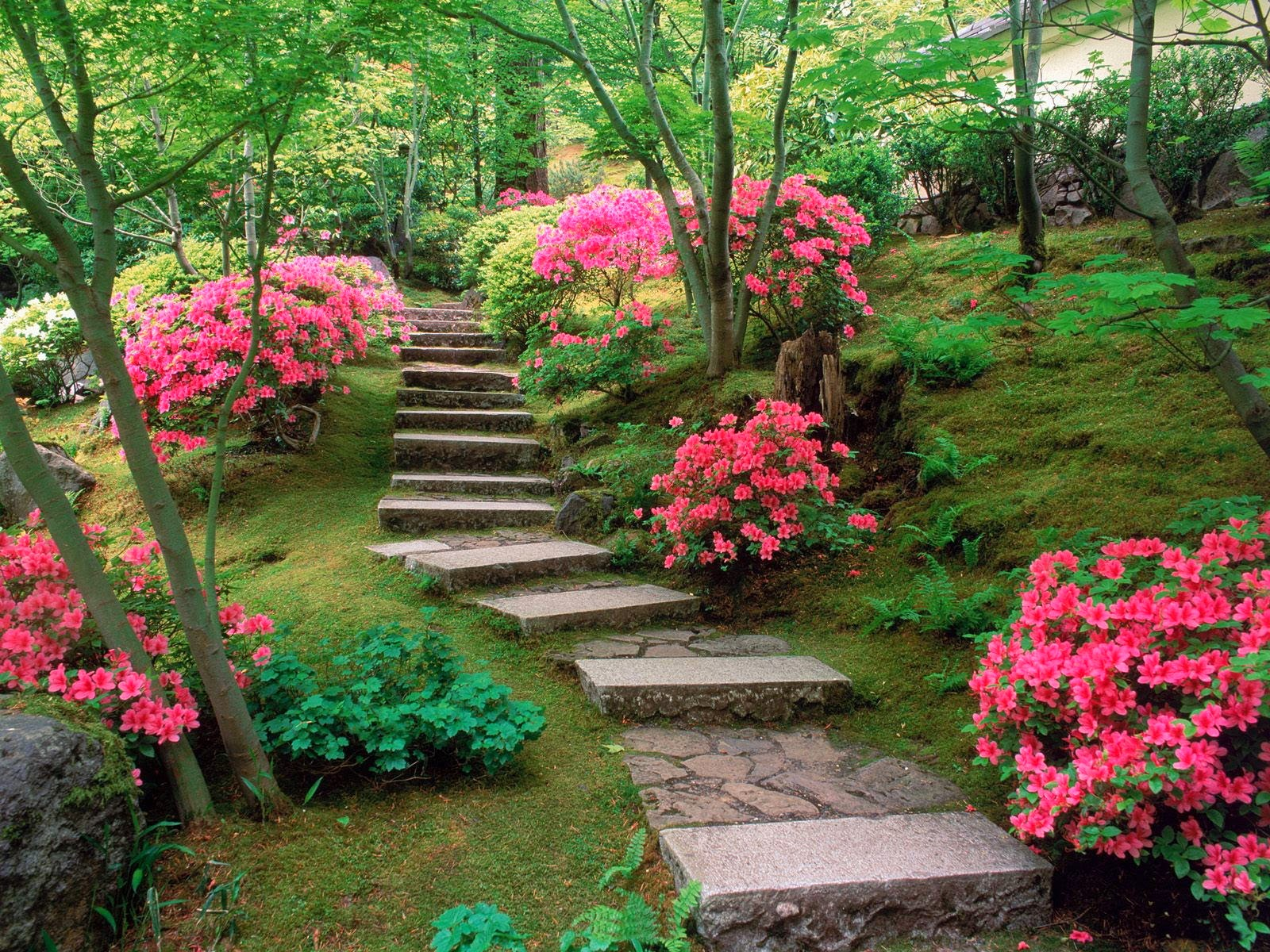beautiful-garden-wallpapers-16-photos-2/