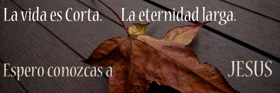 La vida es corta. La eternidad larga.