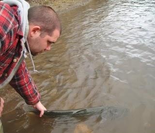 steelhead-fishing-on-the-Umpqua-river-Oregon