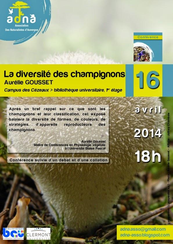 http://4.bp.blogspot.com/-Uqn_9JaC_W8/U0PTWFV6PdI/AAAAAAAAAiM/fJ5_Sq5_lH8/s1600/Affiche+champignon.jpeg