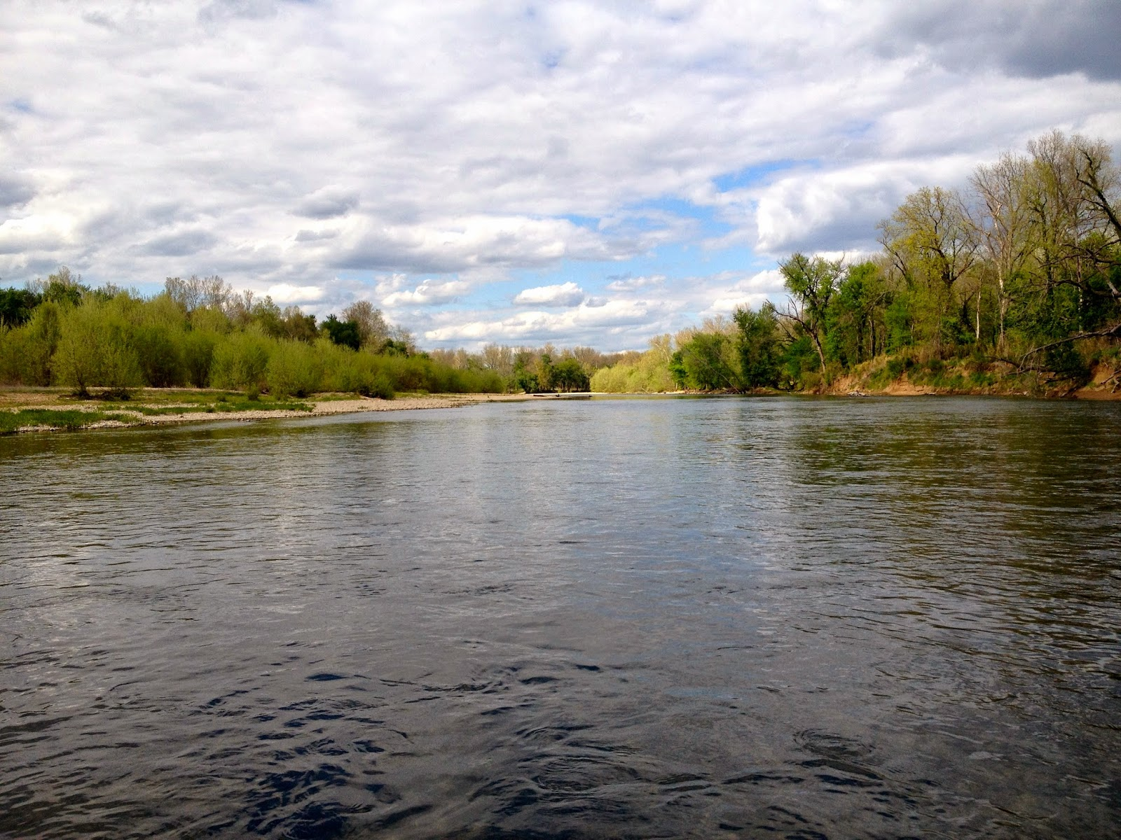 Ozark fly fishing may white bass in the ok and mo streams for Fly fishing oklahoma