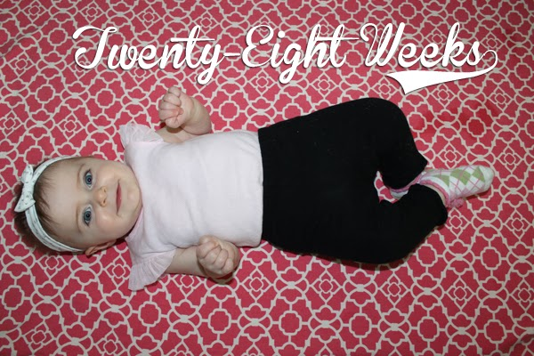 http://meetthegs.blogspot.com/2014/01/lilly-anne-28-weeks.html