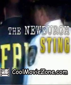 The Newburgh Sting (2014)