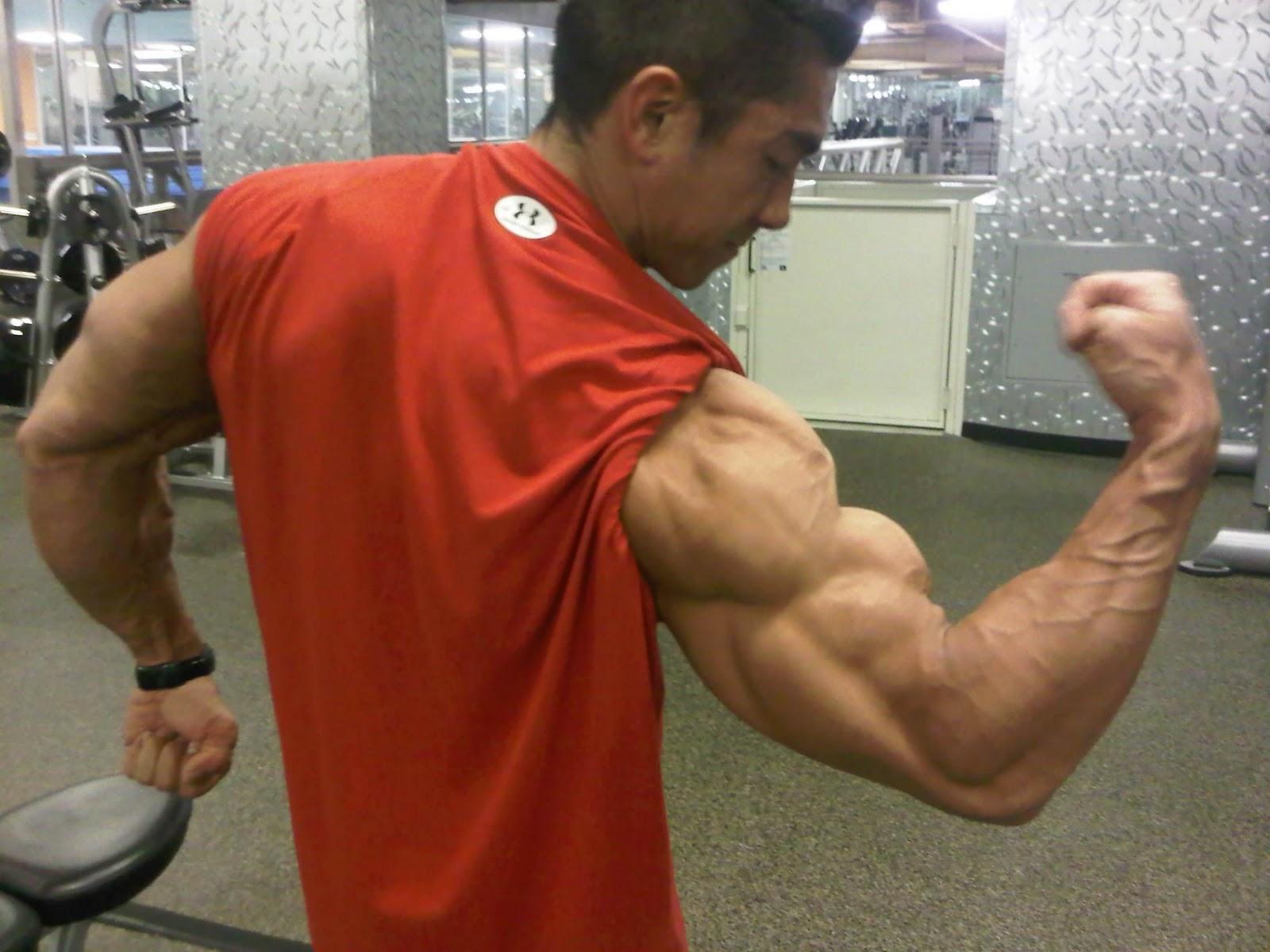 bakekagay com muscle male escort