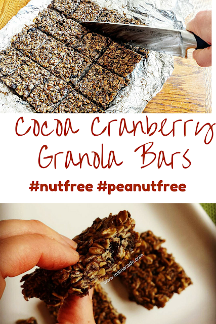 SunButter Cocoa Cranberry Granola Bars Recipe from www.Mamacado.com