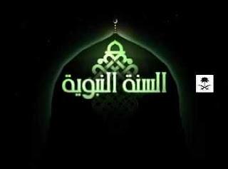 شاهد البث الحى والمباشر لقناة السنة النبوية من المدينة المنورة السعودية بث مباشر اون لاين بدون تقطيع جودة عالية