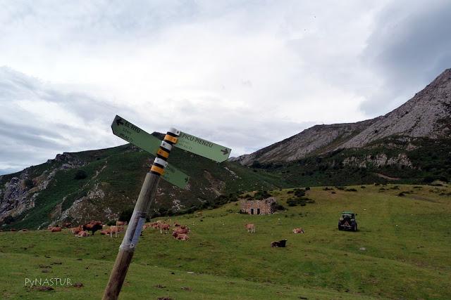 Collada Bustaco - Sierra del Sueve - Asturias