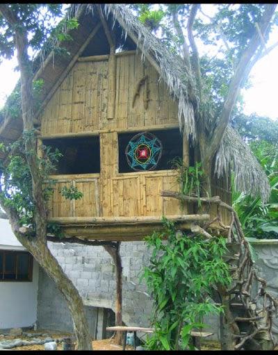 cara membuat rumah sederhana dari bambu yang murah tips