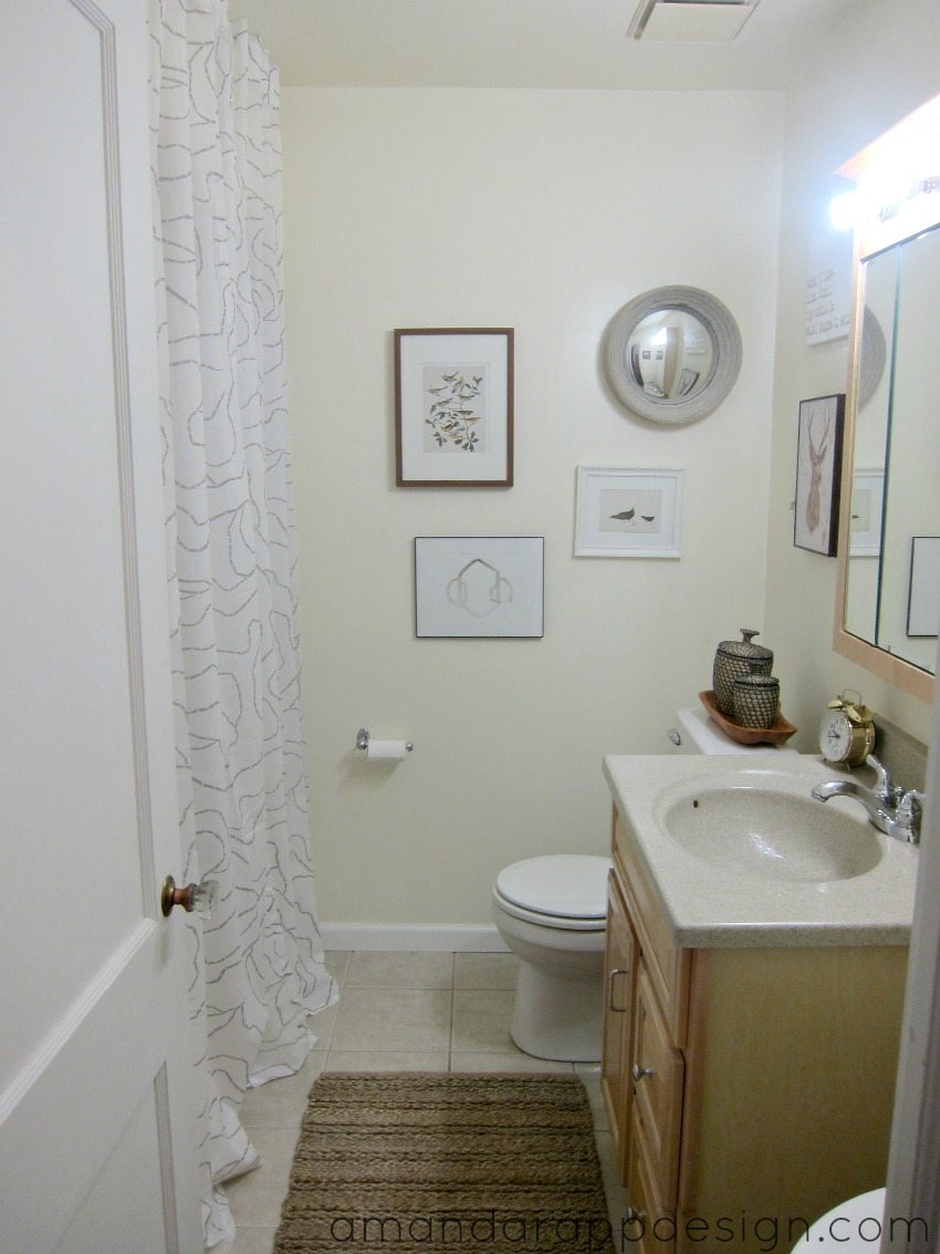 amanda rapp design main bathroom update. Black Bedroom Furniture Sets. Home Design Ideas