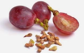 biji buah anggur