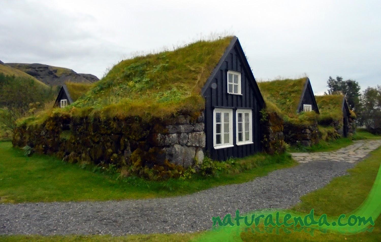 la naturaleza en casa casas con tejado de hierba
