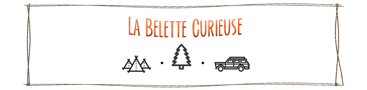 La Belette curieuse
