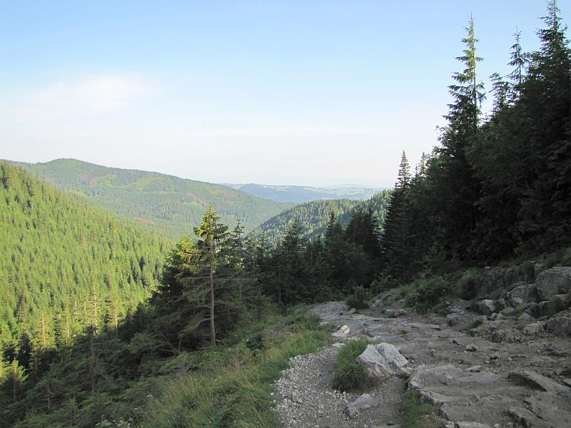 Żółty szlak na zboczu Małej Kopy Królowej ponad Żlebem pod Czerwienicą.