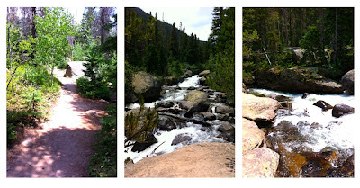 Copeland Falls hike with aspens Rocky Mountain National Park Colorado
