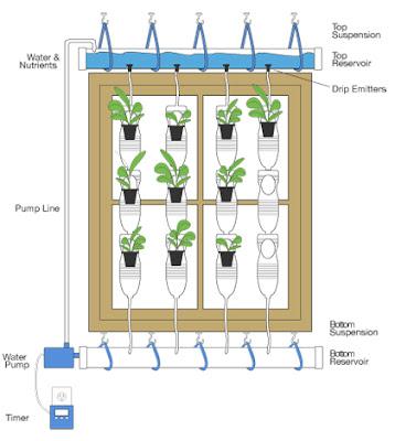 Sol agua tierra cocina de temporada saludable for Sistema riego jardin vertical
