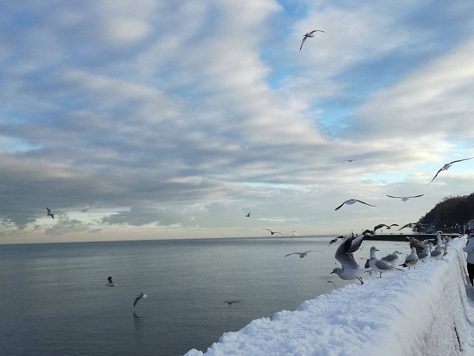 Gdynia-moje miasto :)