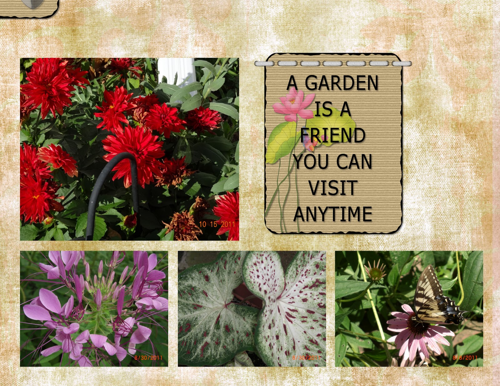 How to make scrapbook look good - Here Are A Couple More Pages That I Made In The My Memories Scrapbook Software I Think They Really Make My Flowers Look Good If You Would Like A Chance