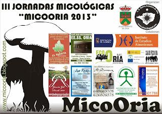 http://micooria.blogspot.com.es/