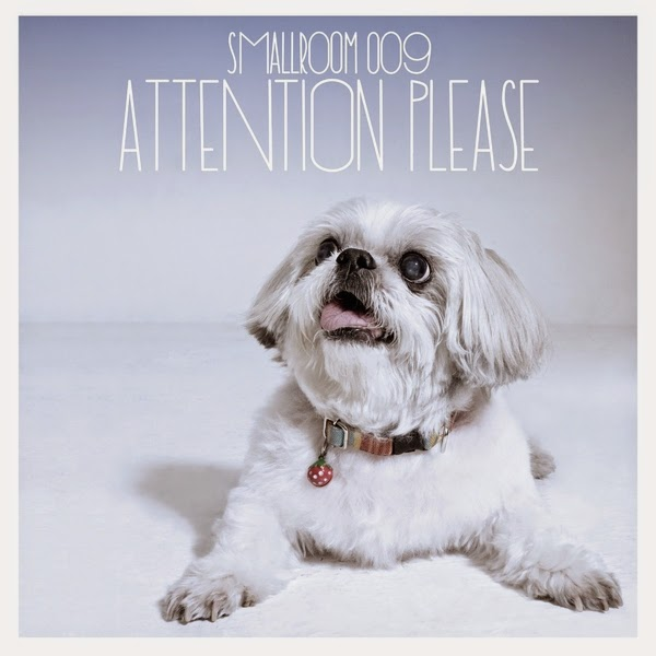 Download [Mp3]-[Hot New Album] SMALLROOM 009 ATTENTION PLEASE [Solidfiles] 4shared By Pleng-mun.com