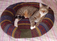 http://sussexmouse.blogspot.co.uk/2013/11/how-i-made-my-cat-jumper-bed-tutorial.html