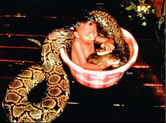 9 Δείτε:Σοκαριστικές εικόνες με παιδιά και επικίνδυνα ζώα!!!