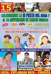 LA FIESTA HUALINERA DEL AÑO 2013