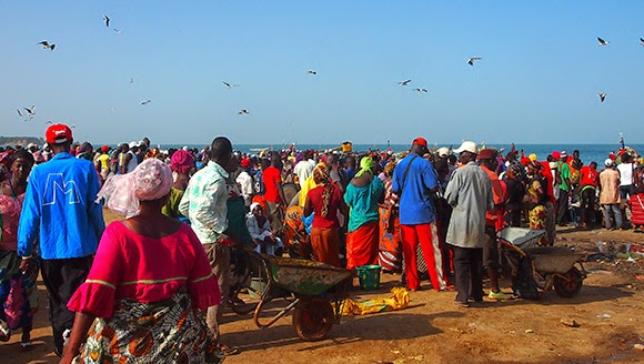 tanji fishing market
