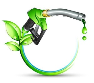 Biofuels no 1