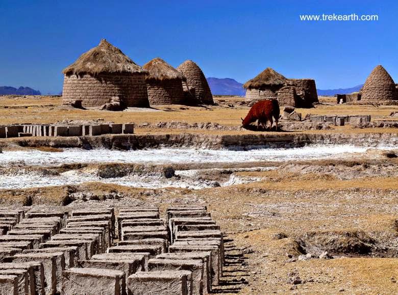 Terrones para construir putucus en el Altiplano