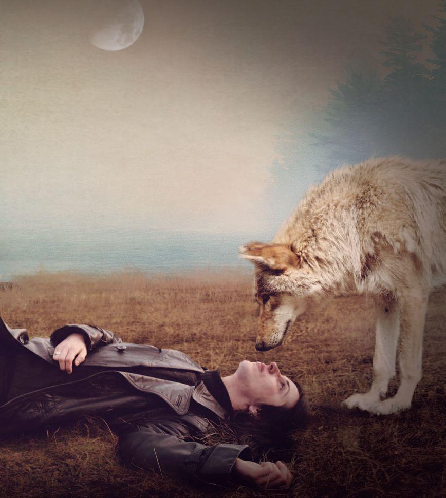 Libros del cielo esta noche no hay luna llena for Que luna hay esta noche