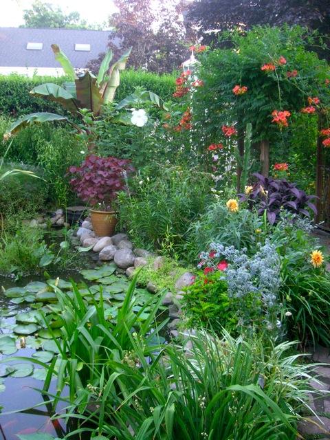 A Tropical Garden In Zone 5
