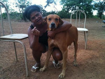 Após salvar dona de estupro, cão vai ganhar carne e roupa de herói no DF