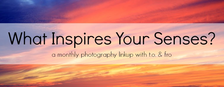 What Inspires Your Senses