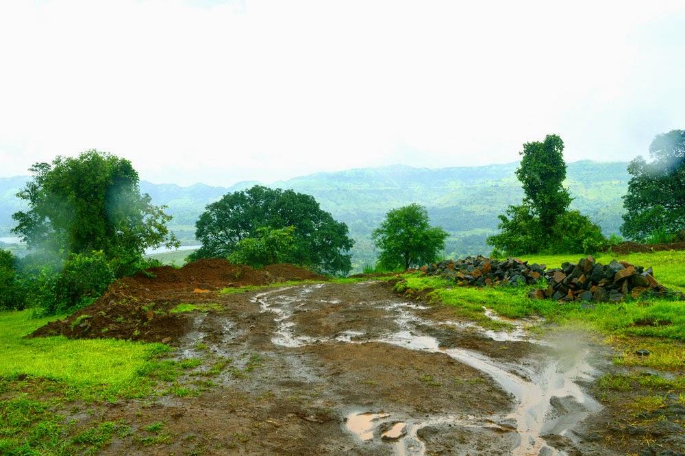 after rainfall