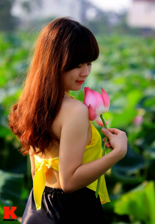 The lotus and Vietnam girl
