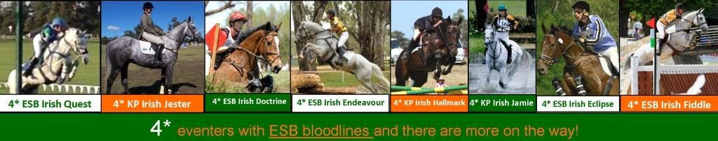 ESB has helped to produce eight 4* eventers ... so far.
