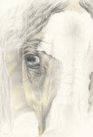 horse art, equine drawing, horse artworks