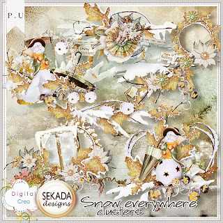 http://digital-crea.fr/shop/sekada-designs-c-155_179/snow-everywhere-clusters-p-14829.html#.UoUqOeJLjEA